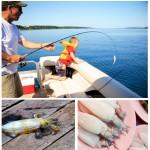 Кальмаровая рыбалка