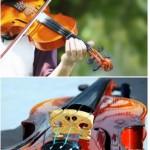 Звуки скрипки